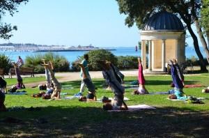 Yoga sous l'Arbre 2018- cours ouverts!